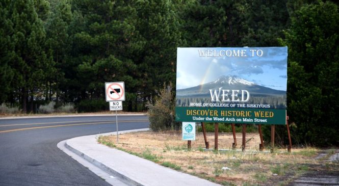 Weed companies find hilarious ad regulations loophole in adopting highways