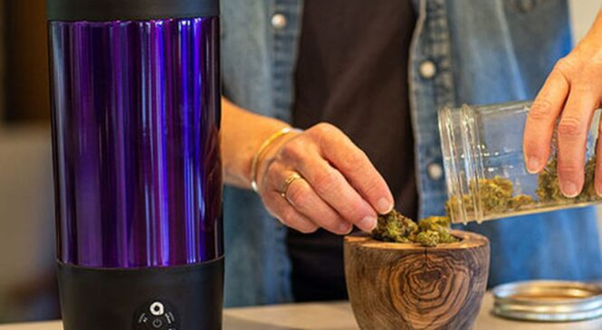 Save $50 on an all-in-one device for making weed edibles
