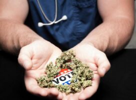 Where was marijuana legalized on Election Day? A state-by-state guide.